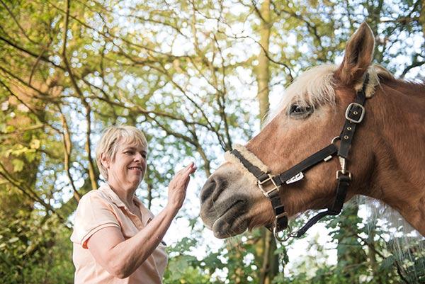 Norina Pferdegestützte Psychotherapie